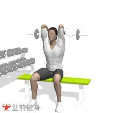 坐姿杠铃屈臂伸(曲杆)