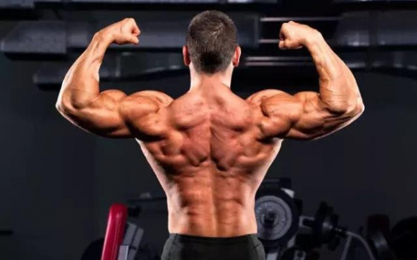 高强度背部训练,四个动作,对你的背阔肌狂轰乱炸