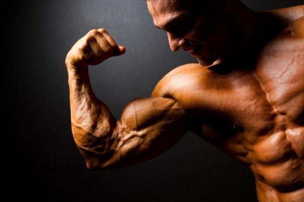 肱二头肌新花样:2个绝佳的动作推荐