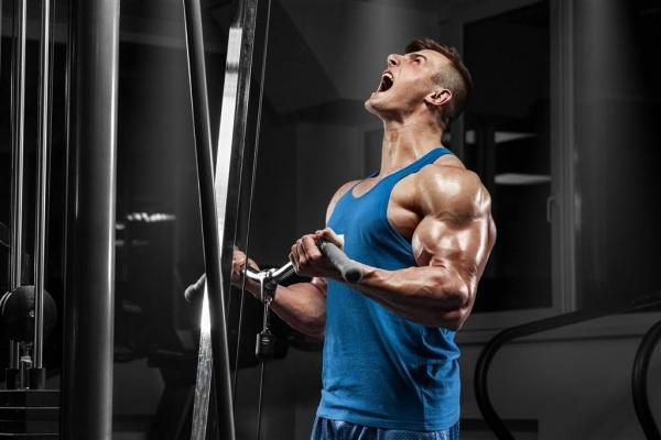 靠击打就能加快肌肉生长?求求你别再做梦了!
