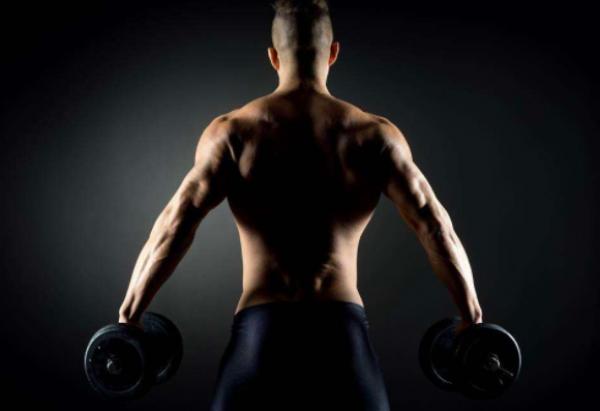 4合成代谢的锻炼方法