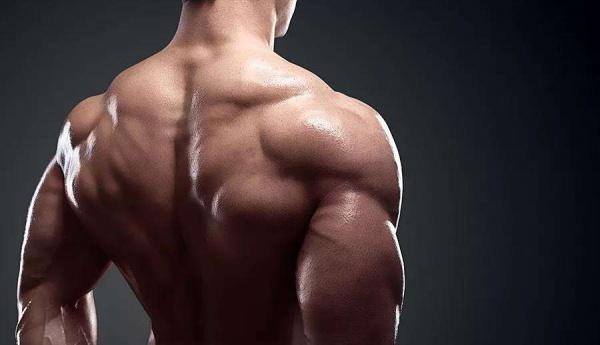 经典胸背超级组训练,最大化增肌训练效果