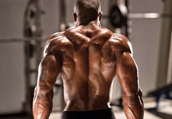 针对性最强的五个斜方肌训练动作。