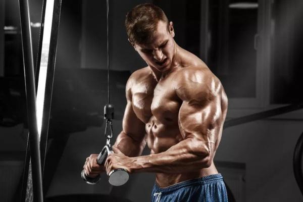 """专注提升力量、练大肌肉的""""密集组"""""""