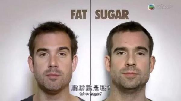 一对双胞胎的实验告诉你让你长胖的究竟是糖还是脂肪?