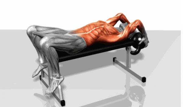 肌肉群锻炼动作示意图,想练什么对号入座!