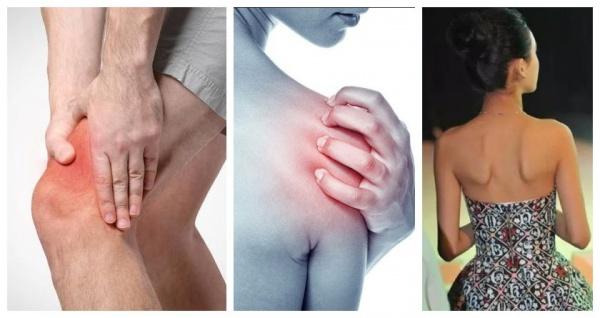 健身不懂「肌肉解剖」?!我劝你还是别练了...