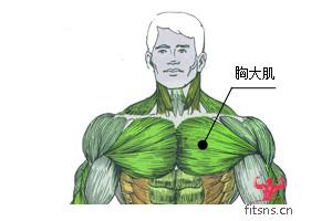 胸部肌肉训练之单臂哑铃卧推